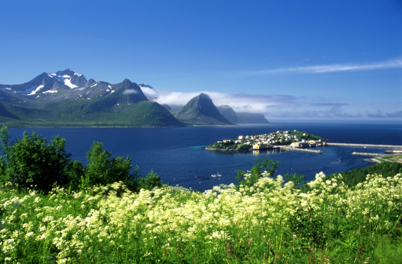 993259-beautiful-island-in-north-norway